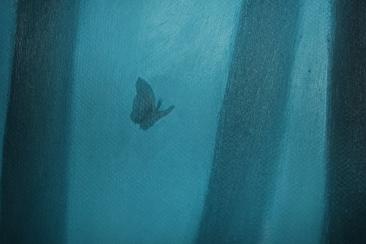 Mariposas en el bosque (2014), detail Sabiana Paoli Art Gallery